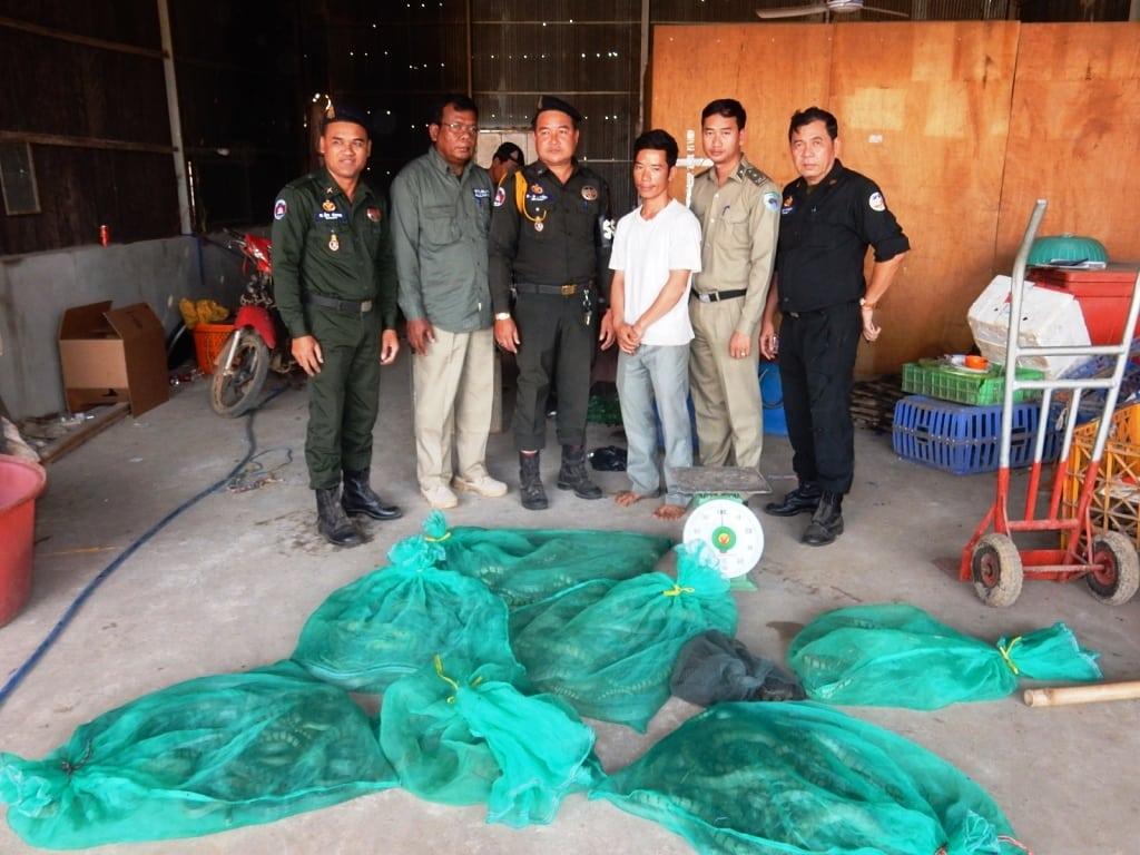 Wildlife seized in Pursat Wildlife seized in Pursat Wildlife seized in Pursat