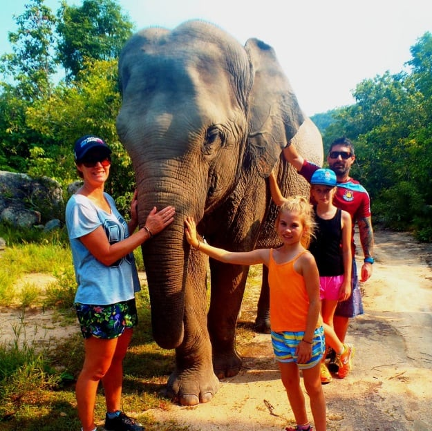 phnom tamao wildlife rescue center The very best things to see and do in Cambodia for families Elephant at phnom tamao Cambodia