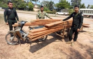 construction timber The rangers stopped one motorbike transporting construction timber Illegal timber Cambodia 320x202