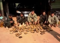 the rangers stopped a car transporting 57 turtles The rangers stopped a car transporting 57 turtles Wildlife Alliance rangers capture car with wildlife 200x142