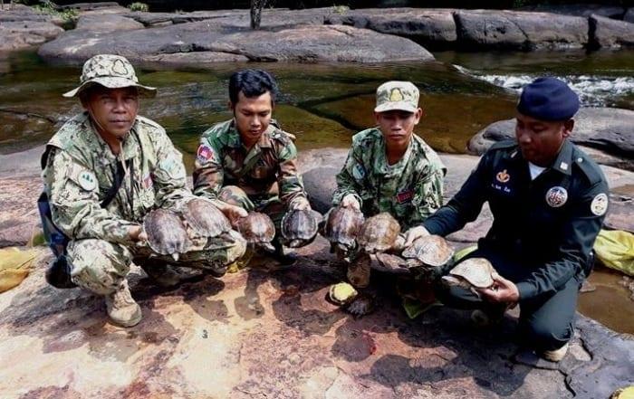 sponsor the asian elephant station Sponsor the Asian Elephant Station Wildlife Alliance rangers releasing animals 700x441