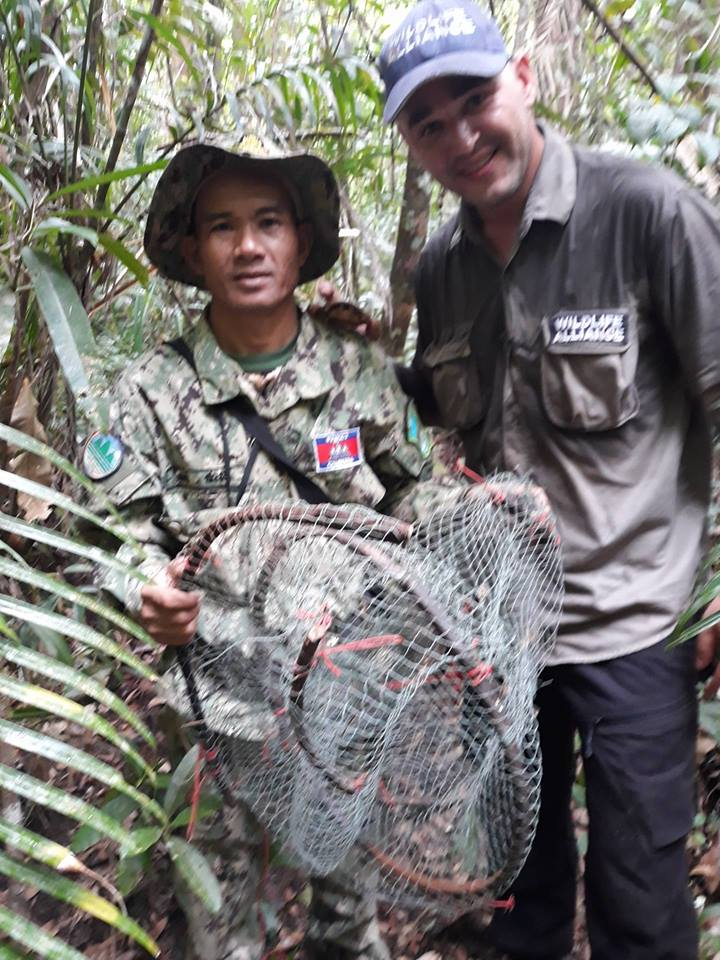 cardamom mountains Are some animals more worth saving than others? One turtle at the time