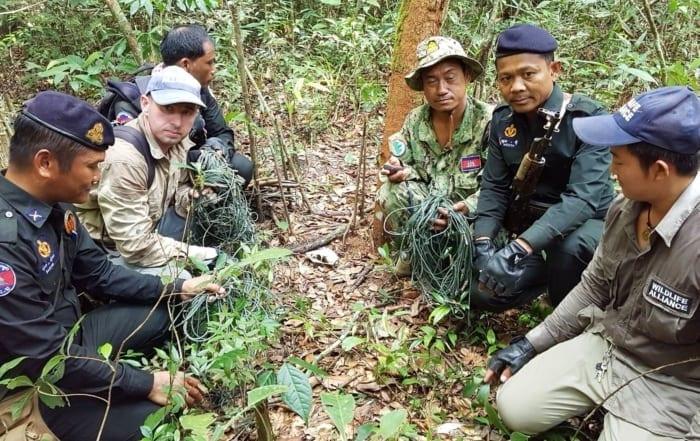 Sponsor a ranger station Rangers remove animal traps 700x441