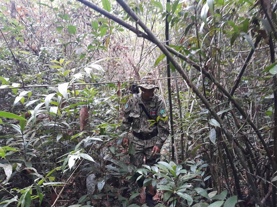 cardamom mountains Are some animals more worth saving than others? The rangers on patrol