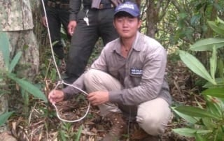 sanares Sun Bear Station dismantle 135 snares wildlife alliance rangers cambodia 1 320x202 cardamom forest Cardamom Protection wildlife alliance rangers cambodia 1 320x202