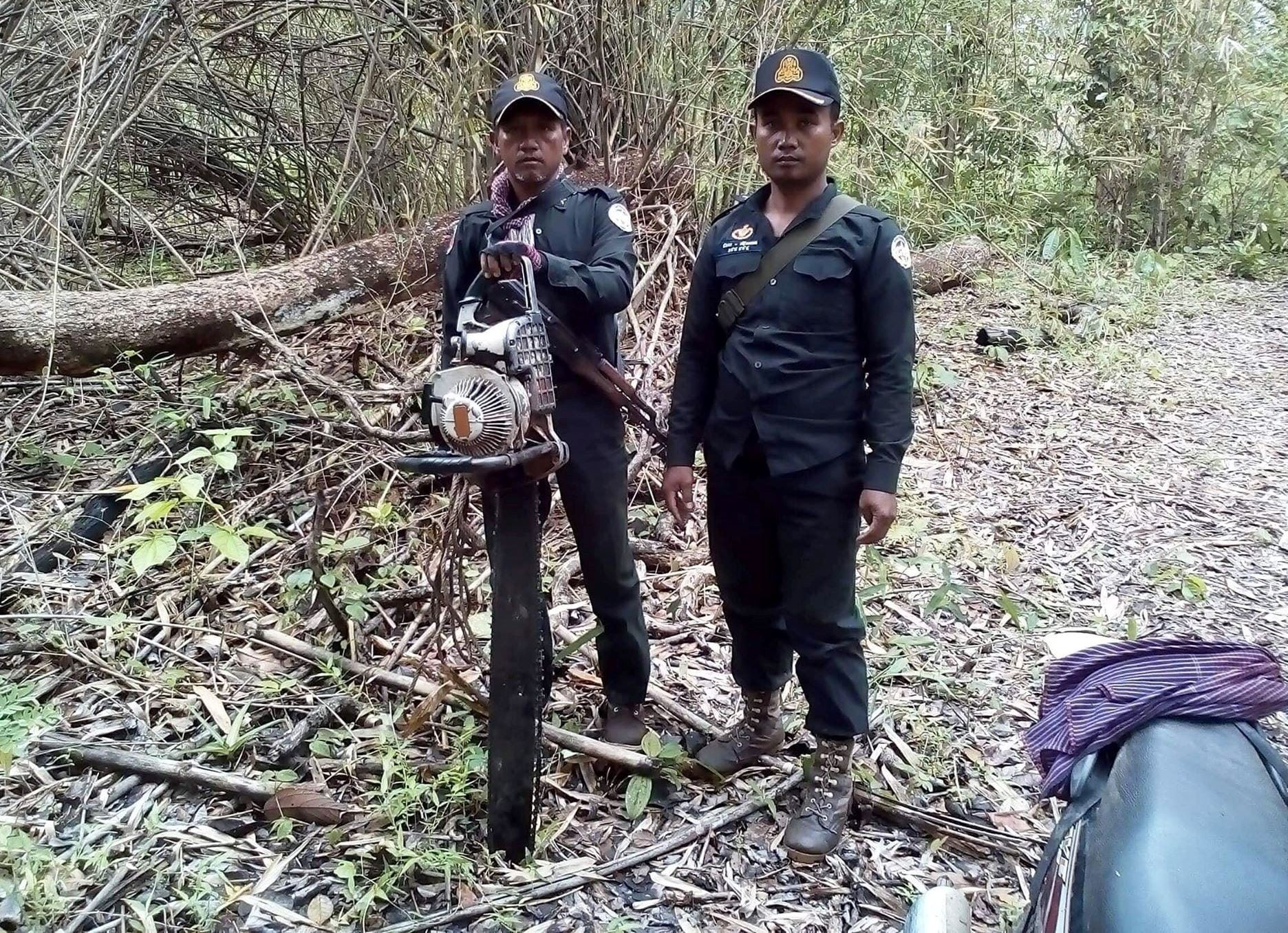 chainsaws Hunting camps and chainsaws Forest rangers cardamom