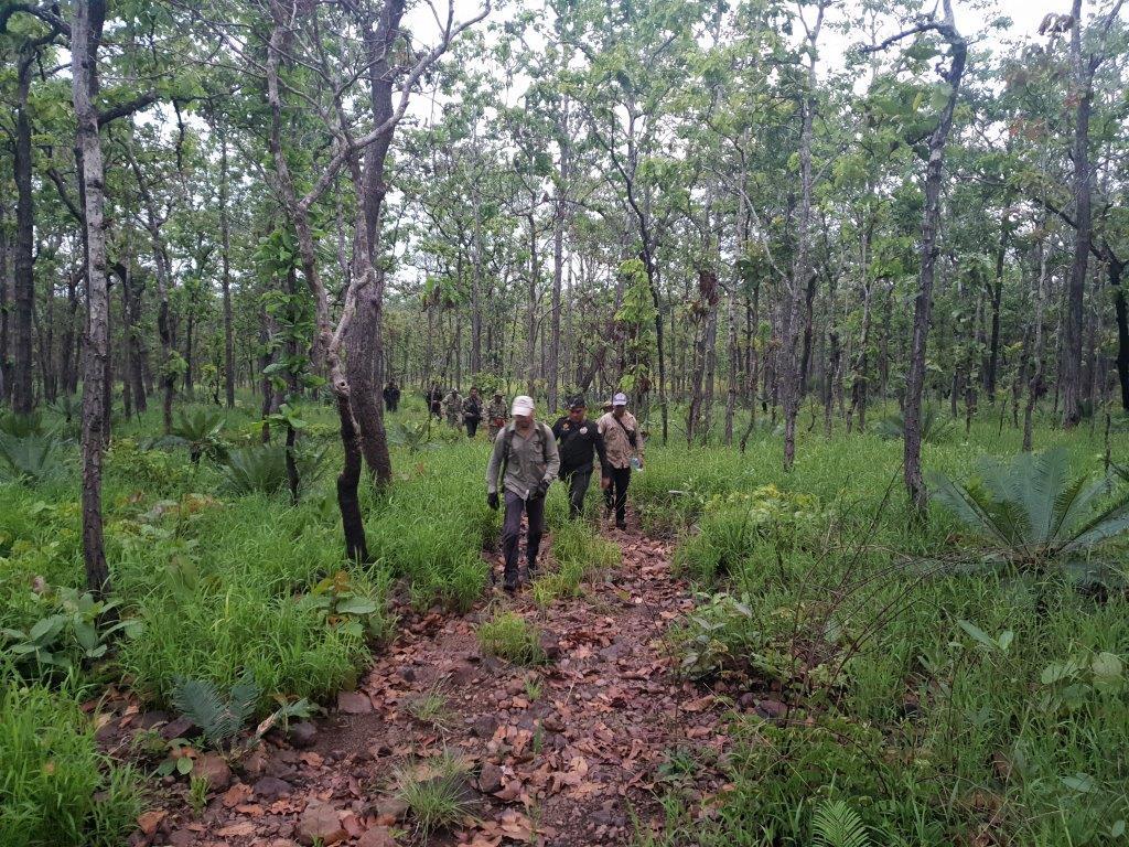 phnom tnout wildlife sanctuary wildlife alliance intervention updates Phnom Tnout Wildlife Sanctuary Wildlife Alliance intervention UPDATES Phnom Tnout Wildlife Sanctuary Wildlife Alliance night ambush 1