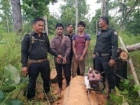 Phnom Tnout Wildlife Sanctuary Wildlife Alliance intervention UPDATES Phnom Tnout Wildlife Sanctuary loggers arrested 2 200x150