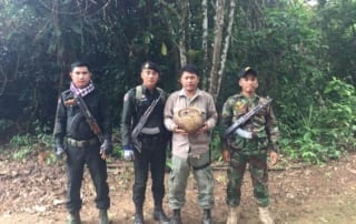 anti-poaching unit saves critically endangered pangolin Anti-Poaching unit saves critically endangered pangolin Wildlife Alliance rangers saved critically endangered pangolin 320x202