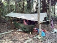chainsaws Hunting camps and chainsaws hunting camp 200x150