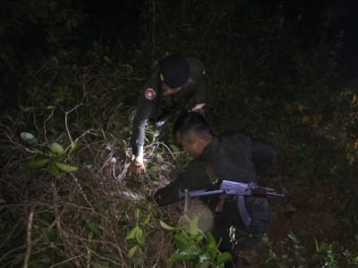 anti-poaching unit saves critically endangered pangolin Anti-Poaching unit saves critically endangered pangolin the poacher throw the bag with the pangolin and escaped in the forest 400x300