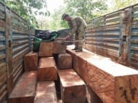 the rangers ambushed a truck transporting illegal timber The rangers ambushed a truck transporting illegal timber illegal timber Cambodia 200x150