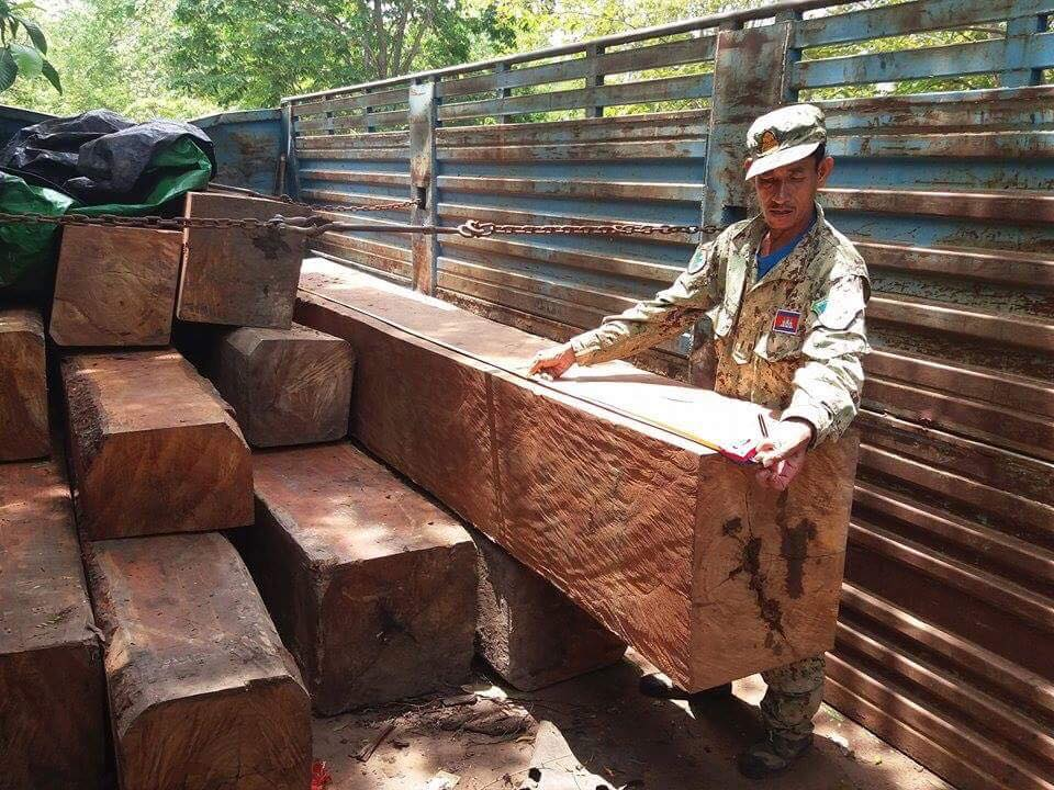 the rangers ambushed a truck transporting illegal timber The rangers ambushed a truck transporting illegal timber illegal timber cought by Wildlife Alliance Rangers