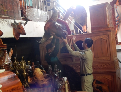 Furniture shop illegally selling endangered wildlife parts