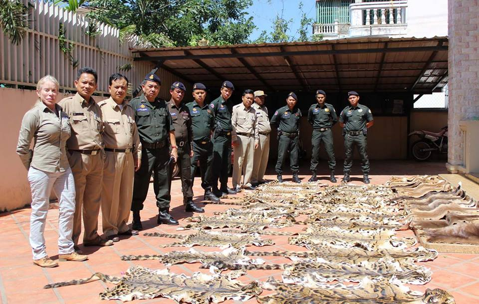 combating wildlife trafficking Combating Wildlife Trafficking Combating Wildlife Trafficking