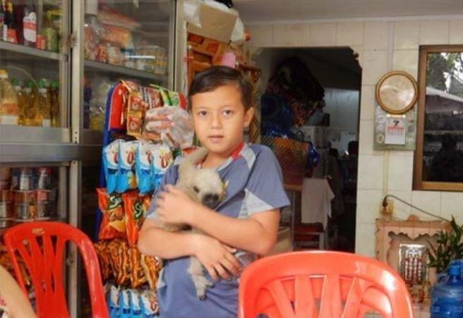 Baby gibbon saved by Wildlife Police Gibbon donation in Phnom Penh