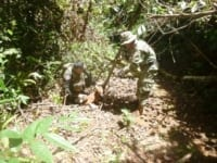 asiatic wild dog Dhole (Asiatic Wild Dog) trapped in snare The rangers save dole 200x150