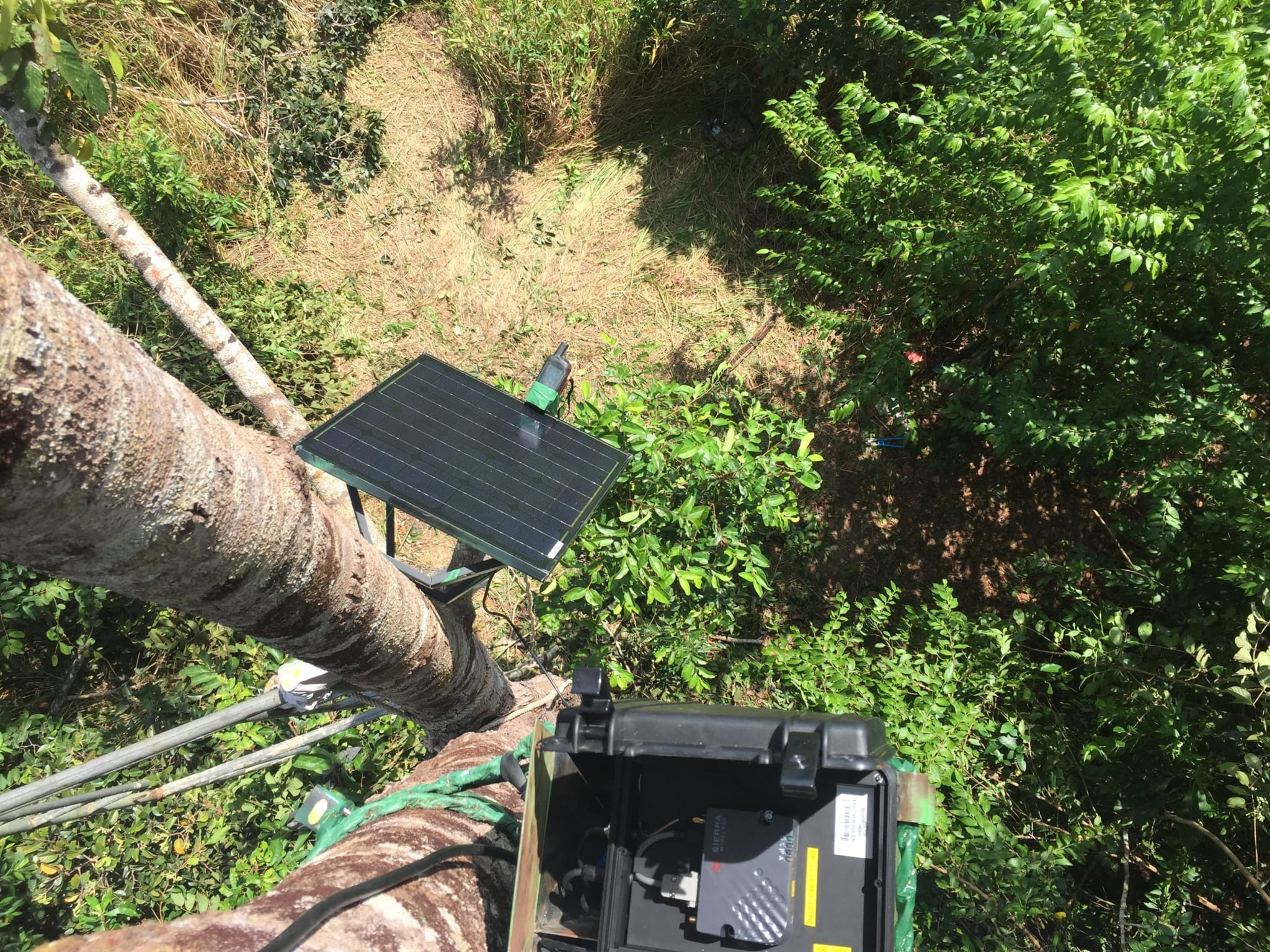 technology Technology is changing the nature of conservation Trail Camera network reciver instalation