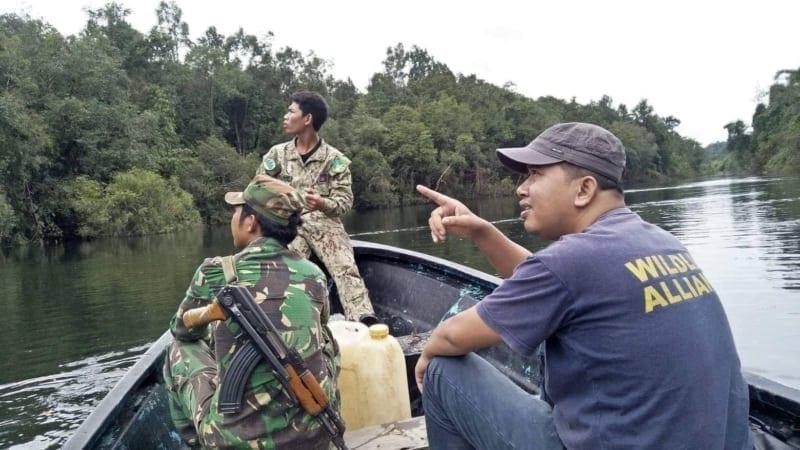 turtle rescue Turtle rescue Wildlife Alliance rangers river patrol 800x450