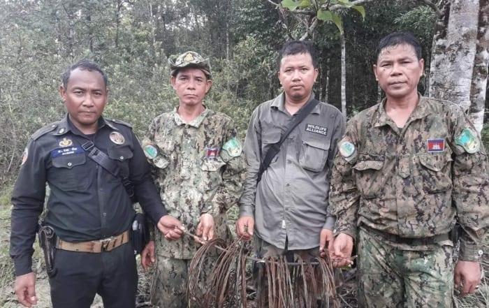 sponsor the asian elephant station Sponsor the Asian Elephant Station metal traps cambodia 700x441