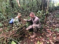 Lethal Traps dismantled by our Forest Guards Wildlife Alliance Forest rangers remove animal traps from the forest floor 200x150 in the news In The News Wildlife Alliance Forest rangers remove animal traps from the forest floor 200x150
