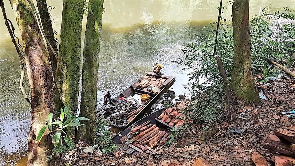 man arrested Man arrested for smuggling luxury timber timber were confiscated Wildlife Alliance