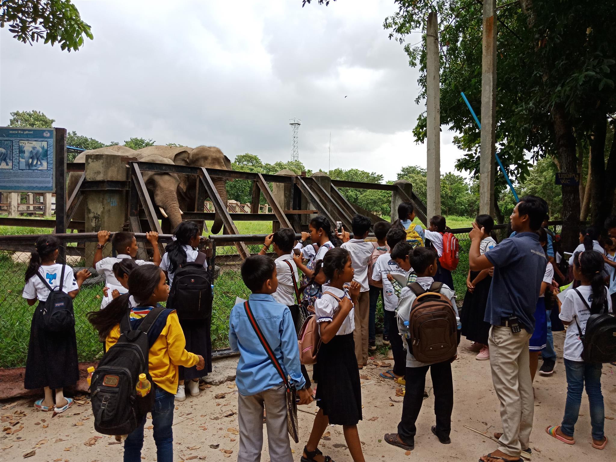 raised awareness Raising awareness of wildlife and habitat protection wildlife and habitat protection Cambodia cildren