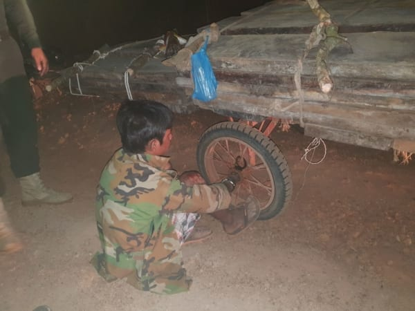 [object object] Illegal timber transportation caught on camera illegal timber trasportation 600x450
