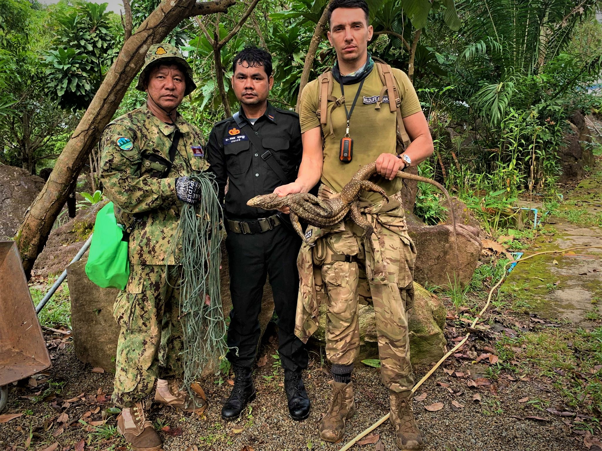 wildlife trapping Cruel Wildlife Trapping Monitor lizard saved by Wildlife Alliance forest guards