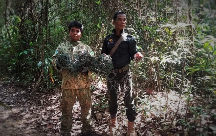 sponsor the sun bear station Sponsor the Sun Bear Station Wildlife Alliance forest guards remove wildlfie traps 700x441