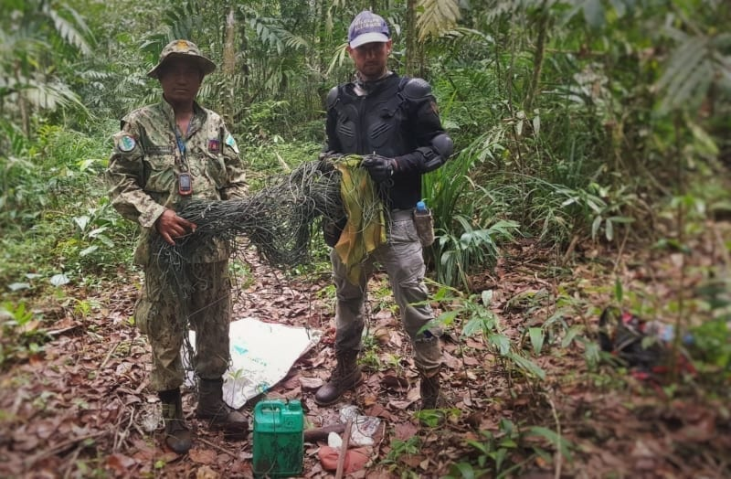 Wildlife traps removed from the forest floor Wildlife Alliance rangers dismantle wildlife traps from the forest floor 800x524