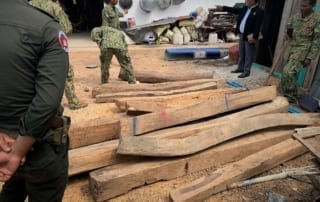 luxury timber Luxury timber dealer sentenced to prison Illegal Timber trader arrested Cambodia 320x202