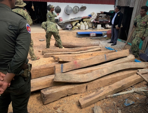 Luxury timber dealer sentenced to prison