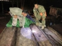 precious timber A truck carrying illegal precious timber seized Precious timber sized Cambodia 200x150