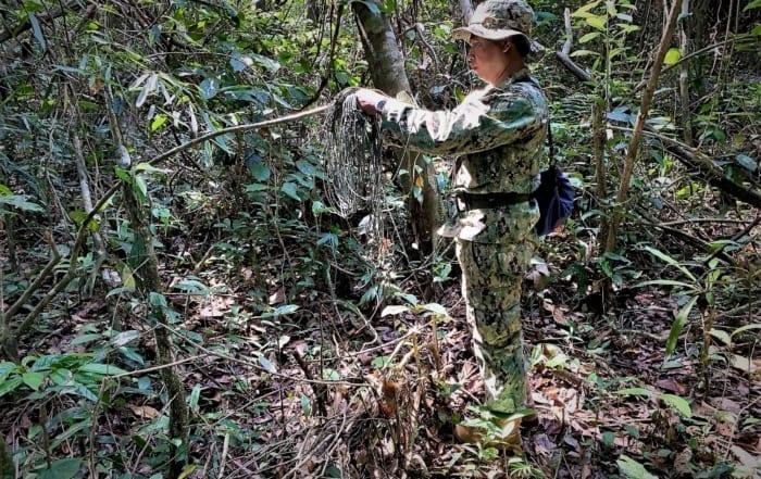 sponsor the siamese crocodile station Sponsor the Siamese Crocodile Station Wildlife traps in Cambodia forests 700x441