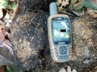 Elephant Monitoring elephant dung UTM 200x150