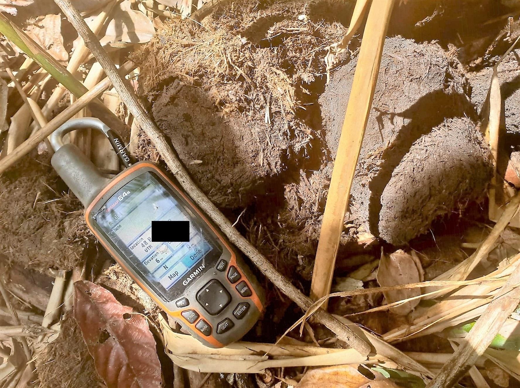 Elephant Monitoring elephant dung recordet