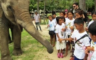 tamao wildlife rescue center Phnom Tamao Wildlife Rescue Center 2011 09 14 KE PTWRC trip Schoolchildren interacting with elephant 320x202