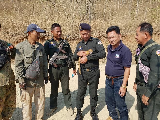 silver langur Silver Langur baby saved by Wildlife Alliance forest guards 2019