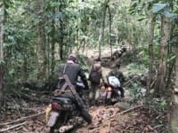 Camping deep in the forest to catch hunters and loggers Deep in jungle Forest guards 200x150