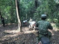Camping deep in the forest to catch hunters and loggers Forest guards on patrol 200x150