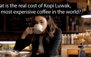 kopi luwak cost What is the real cost of Kopi Luwak coffee? VIDEO The most expensive coffee in the world 320x202 thomas gray Dr. Tom Gray The most expensive coffee in the world 320x202