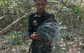 newsletter Newsletter Wildlife Alliance rangers collecting snares from the forest floor in Cambodia 320x202