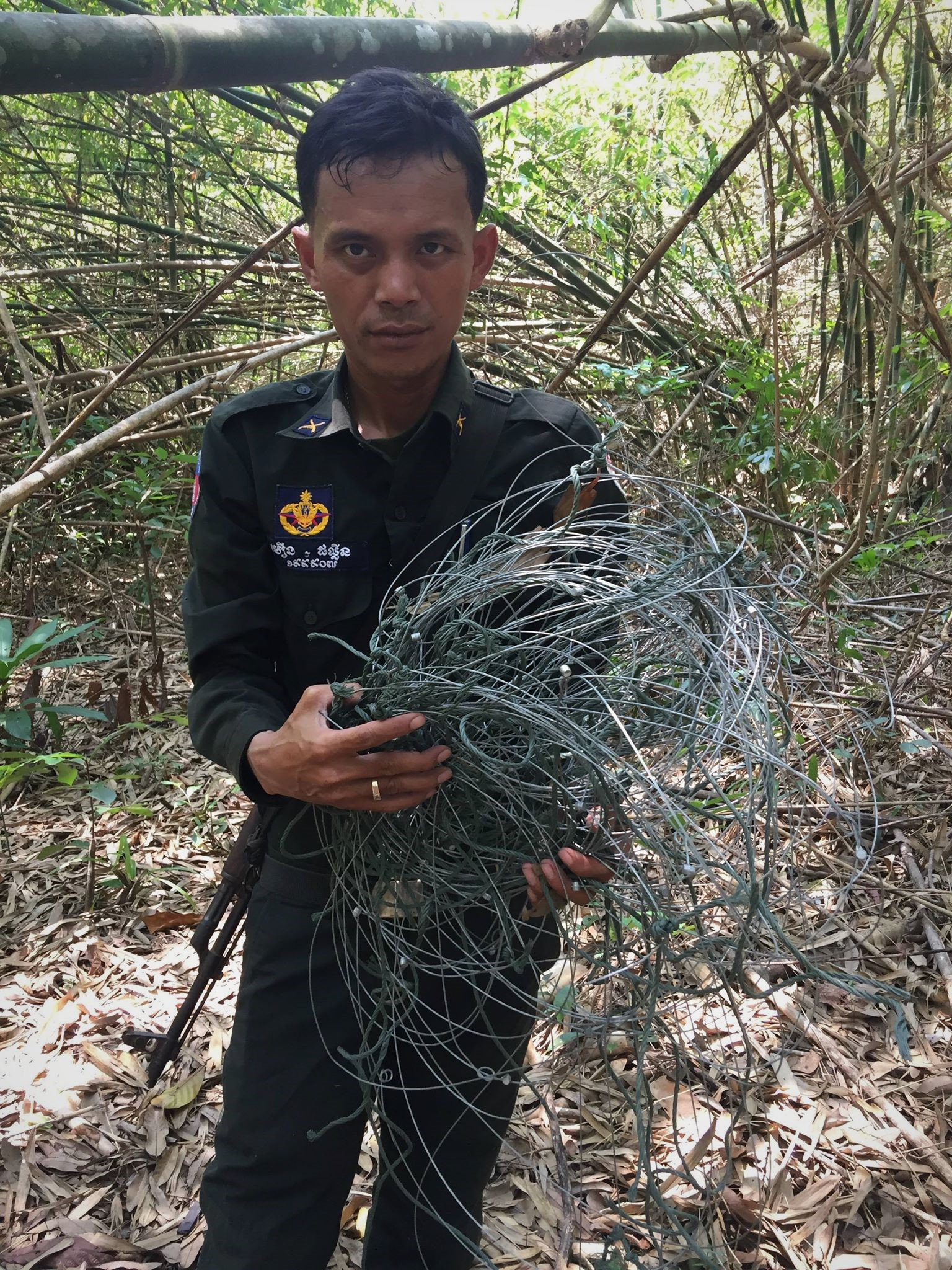 ban snares Call for ban of snares – Dhole caught in snares graphic content forest rangers collecting snares
