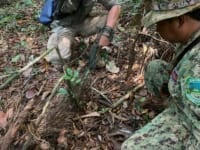 in the news In The News snares animal traps 200x150