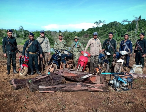 Motorbike fleet and more than half a tonne of luxury timber sized by rangers