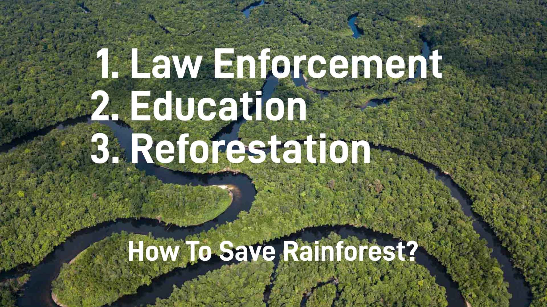 Ways to save rainforest picture
