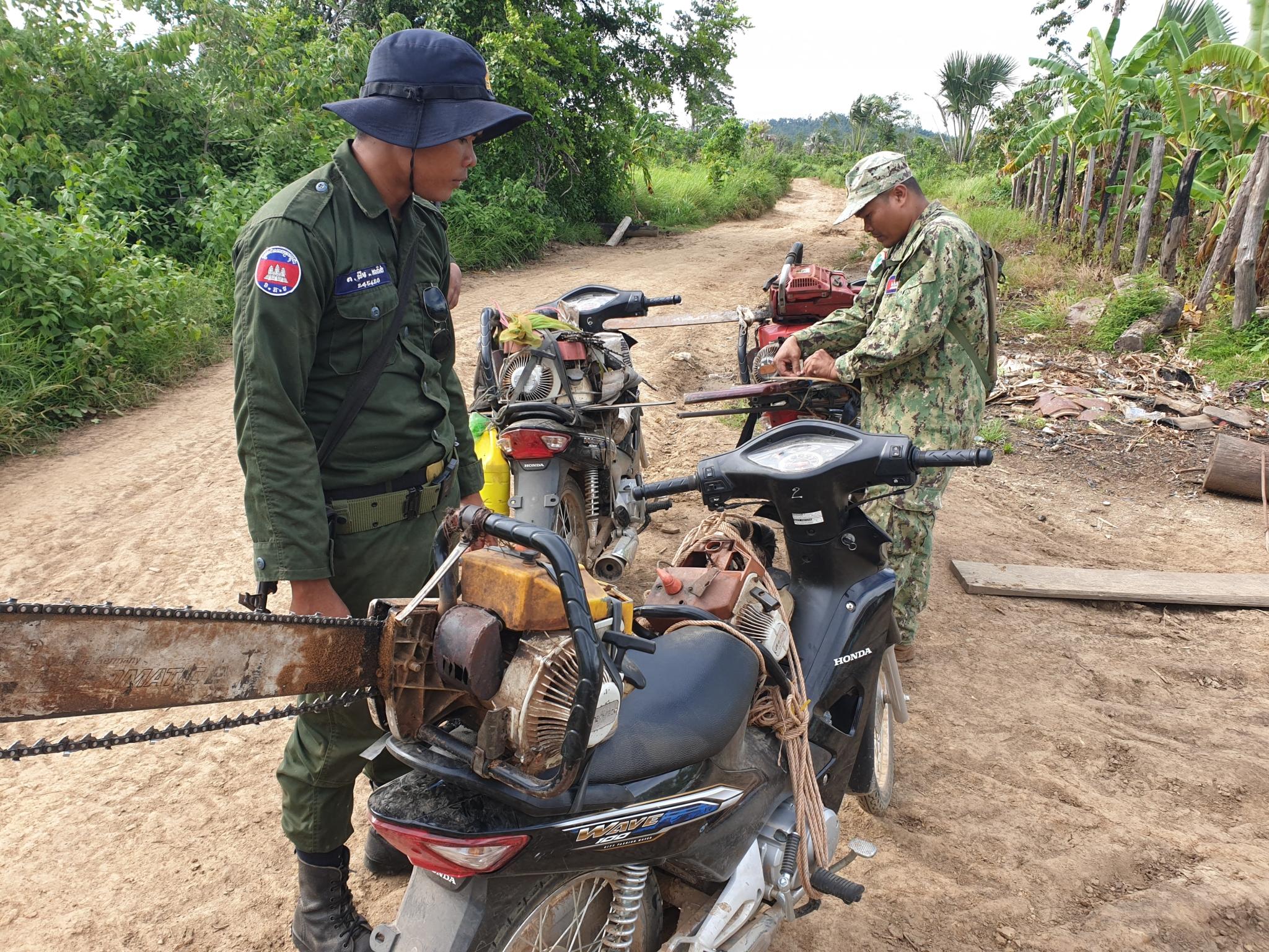 Illegal Chainsaws Wildlife Alliance