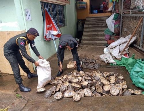 Disrupting the wildlife trade on the Cambodia-Vietnam border