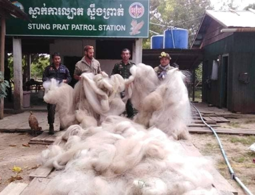 Rangers dismantle 3,200 meters (nearly 2 miles) of bird netting